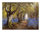 Budding Spring by Daniel Sherrin