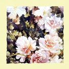 Pink Roses I by Trevor Waugh