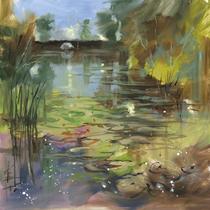 Lily Pond - Calm