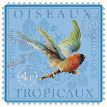 Exotic Birds II