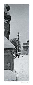 Parisian Panel I