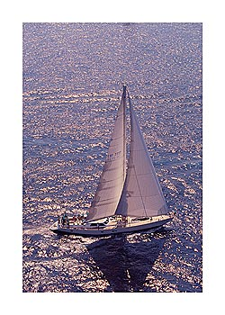 Silver Sea I