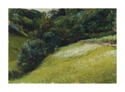Field in Asturias, San Esteban de Pravia by Joaquín Sorolla y Bastida