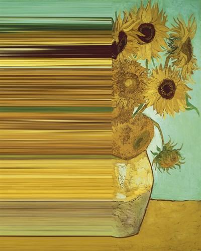 Sunflower Spectrum by Eccentric Accents