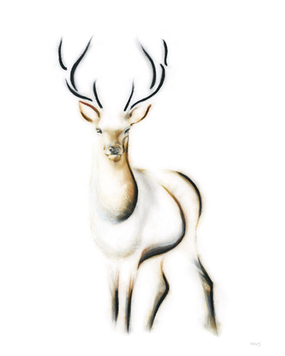 Elegant Stag by Kellas Campbell