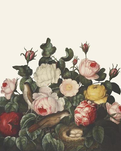 Ornamental Pure - Bosquet by Stephanie Monahan