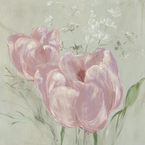 Fine Tulip I - Blush by Maria Mendez