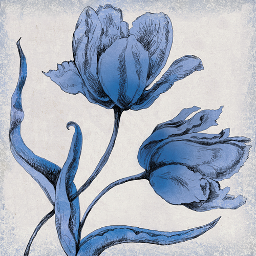 Inked Tulip II by Maria Mendez