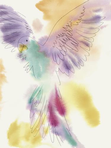 Paradise Parrot - Soar by Kristine Hegre