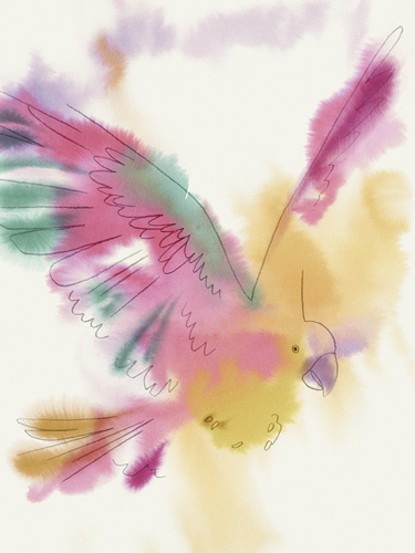 Paradise Parrot - Glide by Kristine Hegre