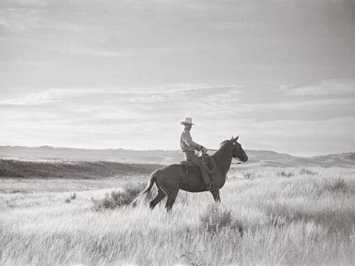 Range Rider by Kernud Hansen