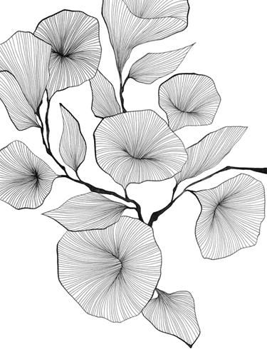 Floral Lines - Harmony by Maja Gunnarsdottir