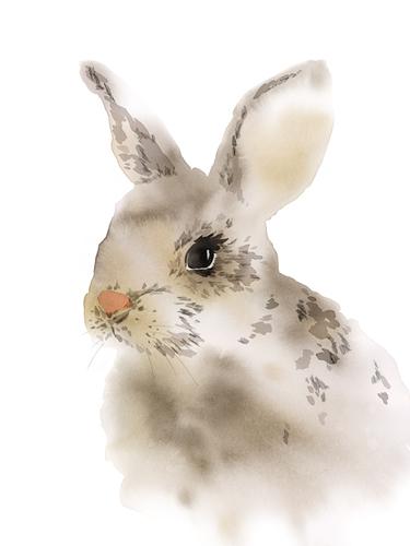 Run Rabbit Run by Kristine Hegre
