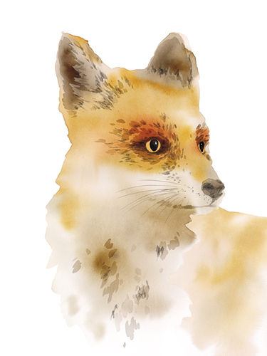 Fearless Fox by Kristine Hegre