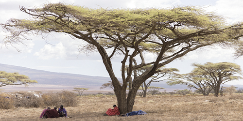 Maasai Moments by Wink Gaines