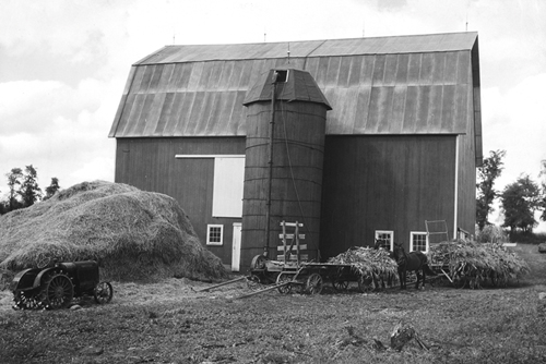 The Old Barn by The Vintage Collection