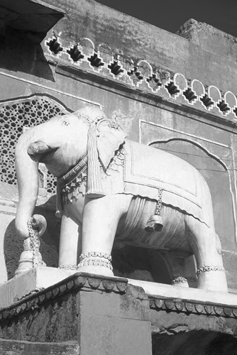 Jaipur Elephant - Grande by David Henley