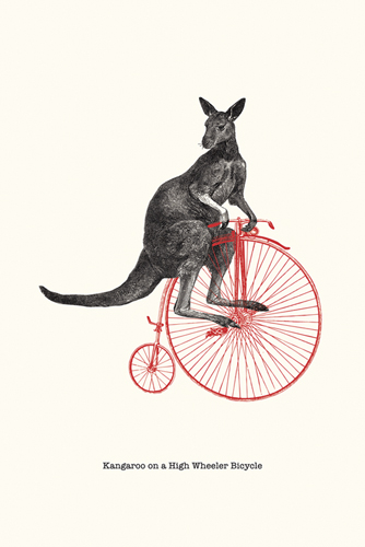 Racing Roo by Gwen Aspall
