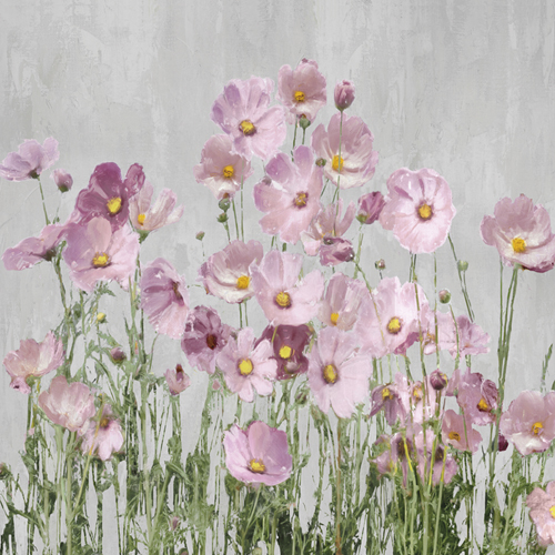 Freshly Pink by Tania Bello