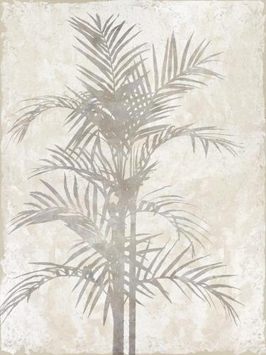 Foliage Shade by Tania Bello