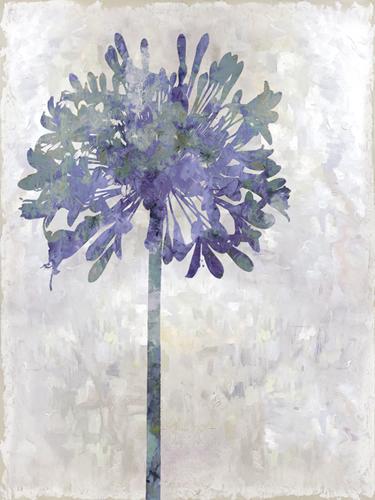 Joyful Bloom - Solo by Tania Bello