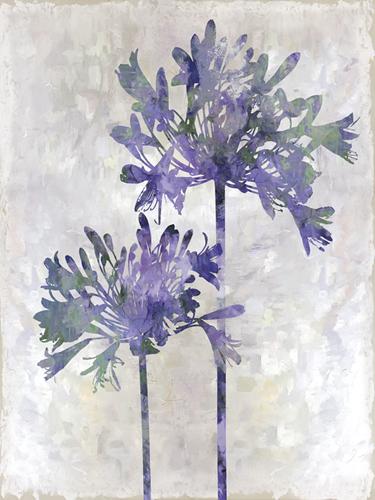 Joyful Bloom - Duet by Tania Bello