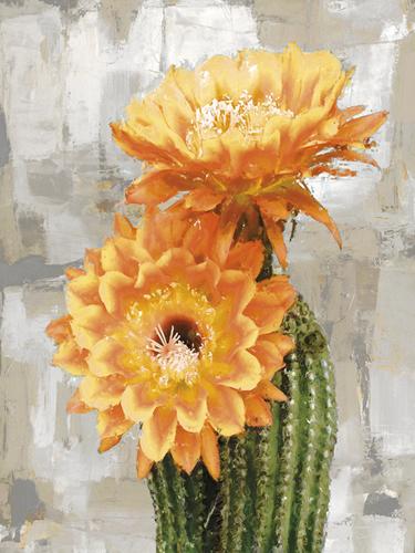 Desert Flower - Duet by Tania Bello