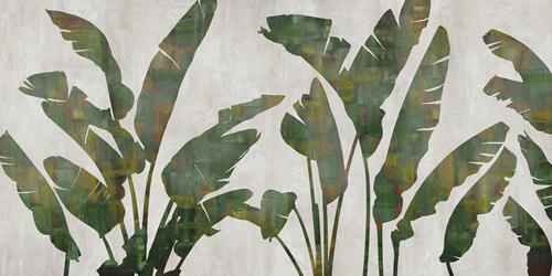Tropical Symmetry by Tania Bello