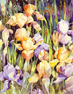 Irises by Trevor Waugh