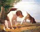 Two Hounds In A Landscape by Jacques Agasse