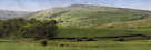 Valley Horses Panoramic by Pete Kelly