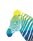 Spectral - Zebra by Myriam Tebbakha