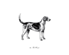 Hound by The Chelsea Collection