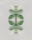 Calamus Lindeni - Reflection by The Drammis Collection