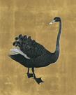 Black Swan - Aurum by The Drammis Collection