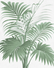 A Friendly Palm by The Vintage Collection