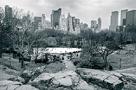 Central Park Vista by Joseph Eta