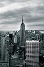 Empire State by Joseph Eta