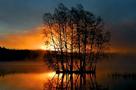 Lake Island by Mikael Svensson