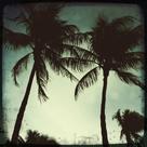 Miami Vintage II by Tony Koukos