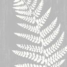 Forest Motif I by Clara Wells