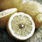 Vintage Fruit I by James Guilliam
