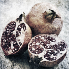 Vintage Fruit IV by James Guilliam