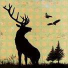 Urban Deer I by Hens Teeth