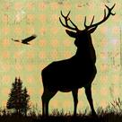 Urban Deer II by Hens Teeth