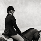 Dressage - The Rider by Pete Kelly