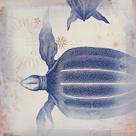 Oceanus Turturem by Ken Hurd