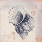 Oceanus Crusta by Ken Hurd