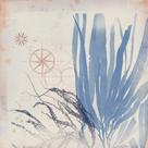 Oceanus Folia by Ken Hurd