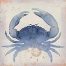 Oceanus Crustacea by Ken Hurd